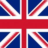 Distributor Vereinigtes Königreich - Auto Mattenreiniger Wash-Mat